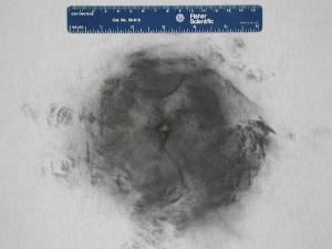 Gunshot residue analysis (GSR) laboratory